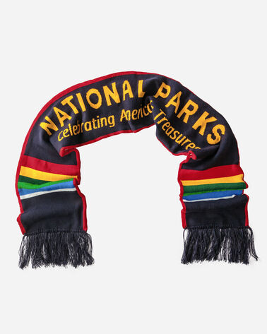 NATIONAL PARK SCRIPT SCARF, MULTI STRIPE, large