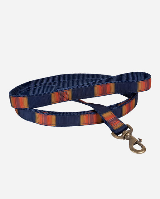 NATIONAL PARK HIKER DOG LEASH IN GRAND CANYON