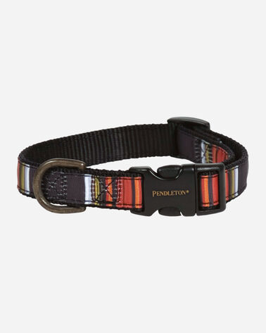 NATIONAL PARK HIKER DOG COLLAR IN ACADIA