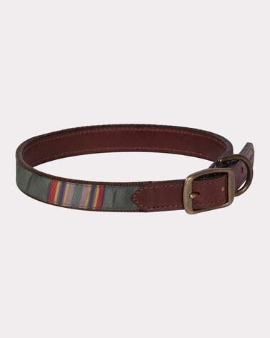 YAKIMA CAMP EXPLORER DOG COLLAR