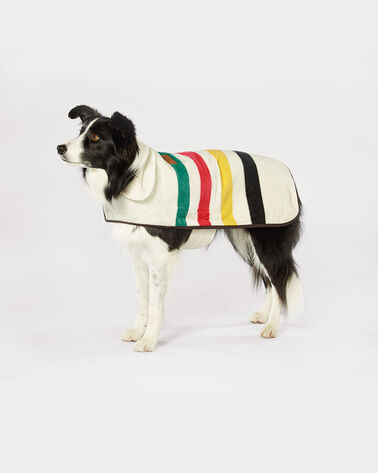 LARGE NATIONAL PARK DOG COAT, GLACIER PARK, large