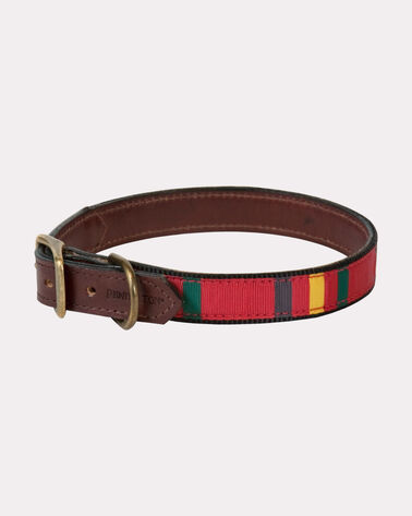 NATIONAL PARK EXPLORER DOG COLLAR