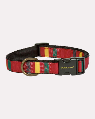 NATIONAL PARK HIKER DOG COLLAR, RAINIER, large