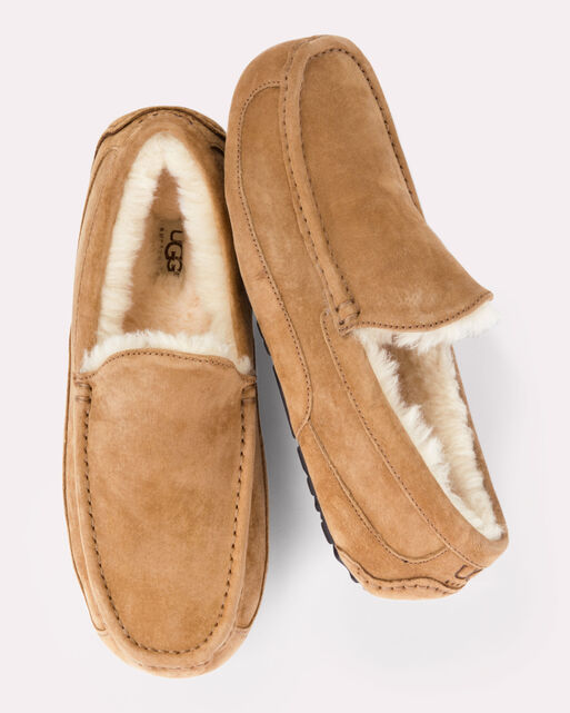 ASCOT SLIPPERS, CHESTNUT, large