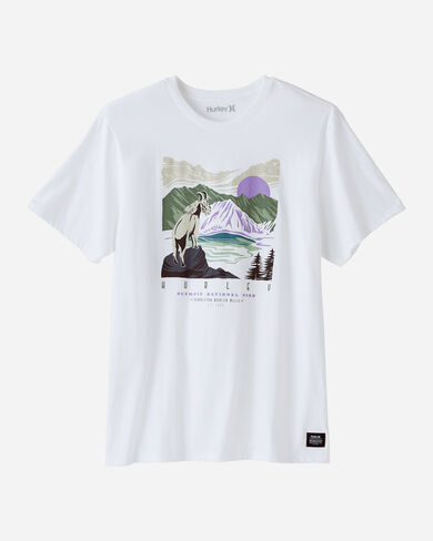 HURLEY X PENDLETON NATIONAL PARK TEE IN WHITE OLYMPIC