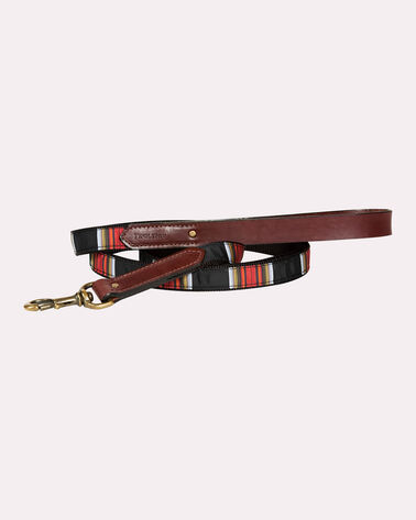 NATIONAL PARK EXPLORER DOG LEASH