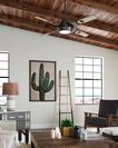 ADDITIONAL VIEW OF 54-IN HUNTER MATTE TWO SIDED CEILING FAN IN SPIDER ROCK