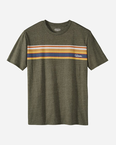 MEN'S NATIONAL PARK STRIPE TEE IN GREEN HEATHER