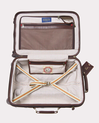 20-INCH GLACIER STRIPE SPINNER LUGGAGE