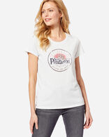 WOMEN'S SURF PENDLETON GRAPHIC TEE IN IVORY MCIAN TARTAN