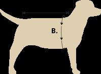 Dog Coat Size